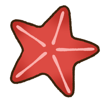 赤いヒトデ02