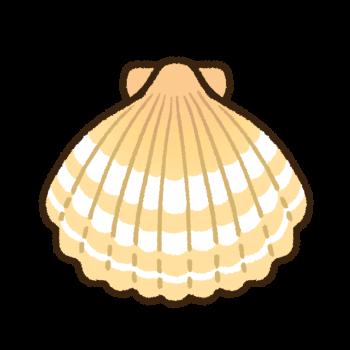 肌色のホタテ貝殻