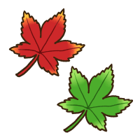 赤色と緑色の紅葉の葉